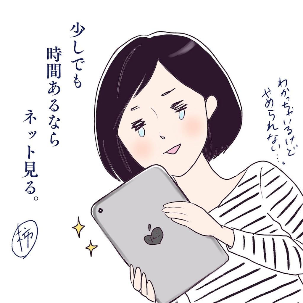 f:id:akinokaki:20161114211243j:plain