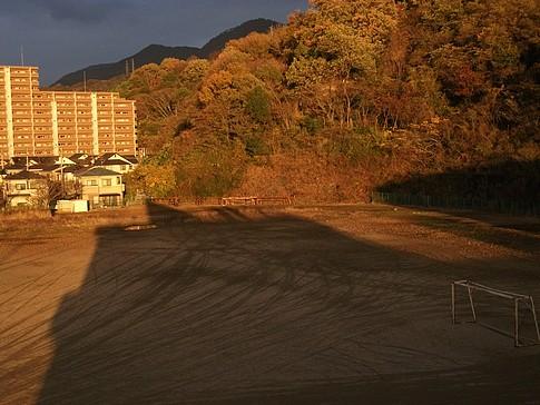 f:id:akinosato:20090116210634j:image