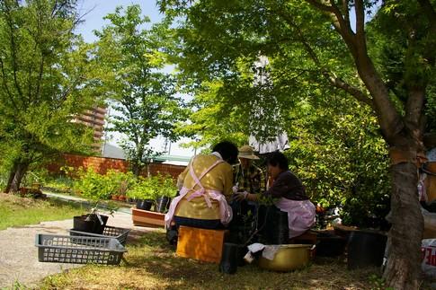 f:id:akinosato:20110513134813j:image