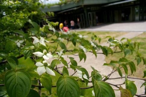 f:id:akinosato:20110525125459j:image