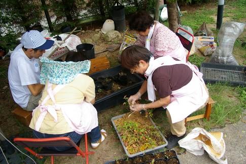 f:id:akinosato:20110916103748j:image