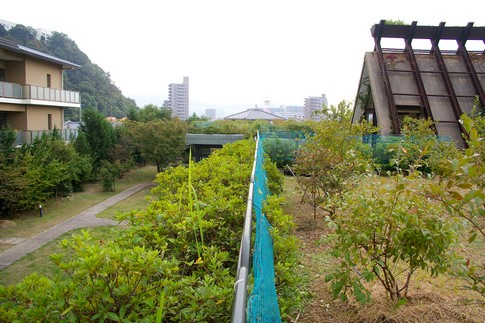 f:id:akinosato:20111013133820j:image