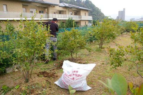 f:id:akinosato:20111013133904j:image