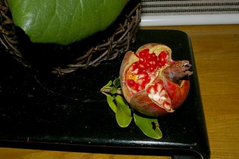 f:id:akinosato:20111021150440j:image