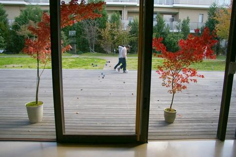 f:id:akinosato:20111124123305j:image