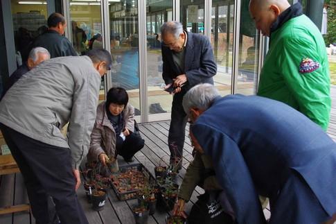 f:id:akinosato:20120222192248j:image