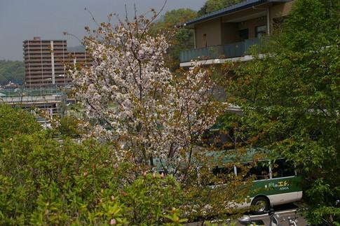 f:id:akinosato:20120424134239j:image