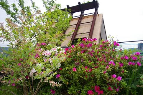 f:id:akinosato:20120501161326j:image