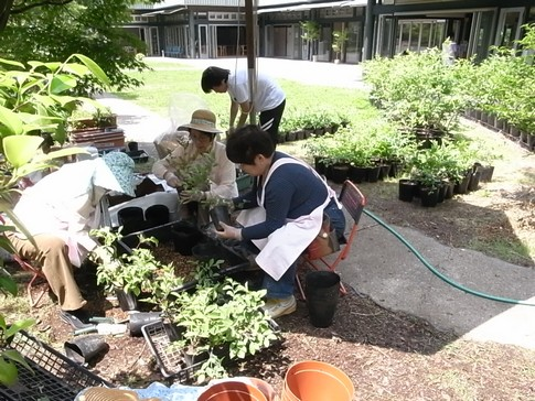 f:id:akinosato:20120518111236j:image