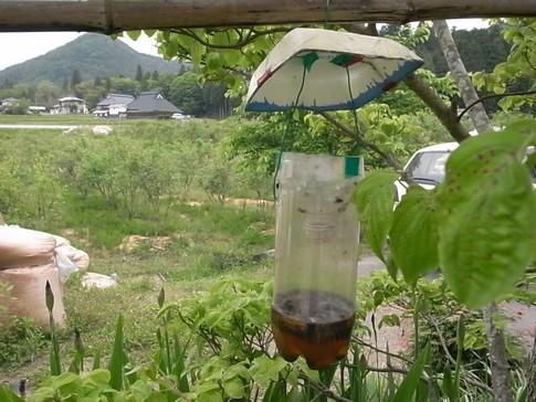 f:id:akinosato:20120520112519j:image