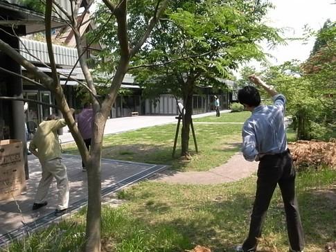 f:id:akinosato:20120528102534j:image