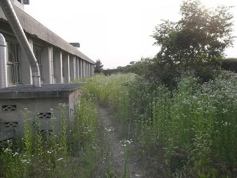 f:id:akinosato:20120530180357j:image