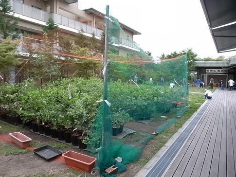 f:id:akinosato:20120605131101j:image