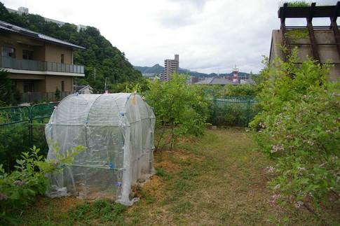 f:id:akinosato:20120612131935j:image