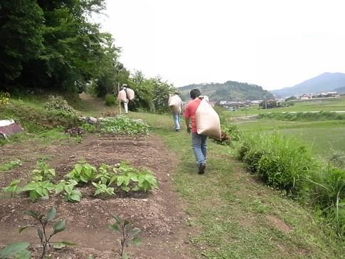 f:id:akinosato:20120615115427j:image