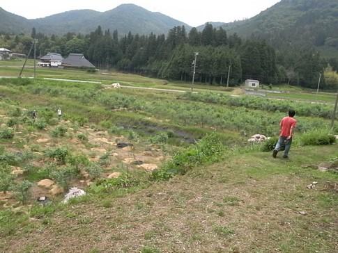 f:id:akinosato:20120615115554j:image