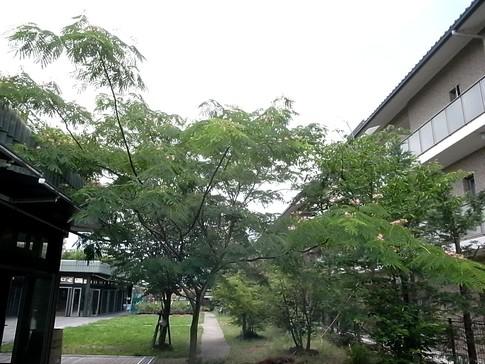 f:id:akinosato:20120622133951j:image