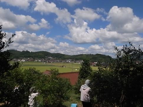 f:id:akinosato:20120902133648j:image