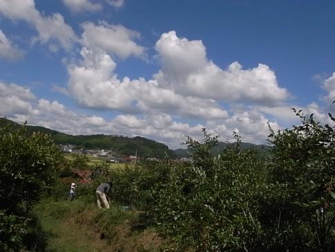 f:id:akinosato:20120902133728j:image