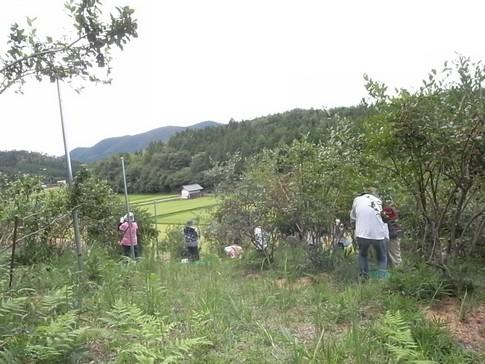 f:id:akinosato:20120908134011j:image