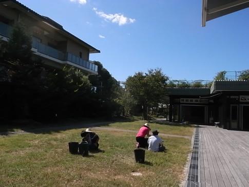f:id:akinosato:20121004112128j:image