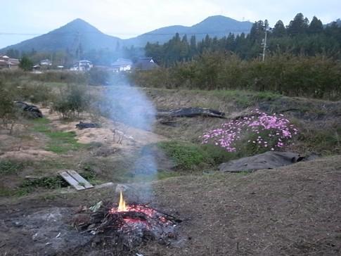 f:id:akinosato:20121014181531j:image
