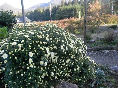 f:id:akinosato:20121029081942j:image