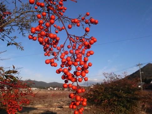 f:id:akinosato:20130105162126j:image