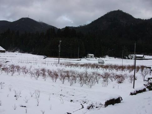 f:id:akinosato:20130115155517j:image