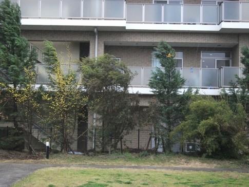 f:id:akinosato:20130319085522j:image