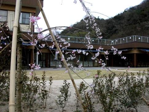 f:id:akinosato:20130327171005j:image