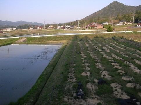 f:id:akinosato:20130506173046j:image
