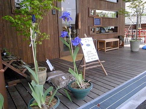 f:id:akinosato:20130515130701j:image