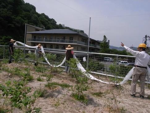 f:id:akinosato:20130605104201j:image