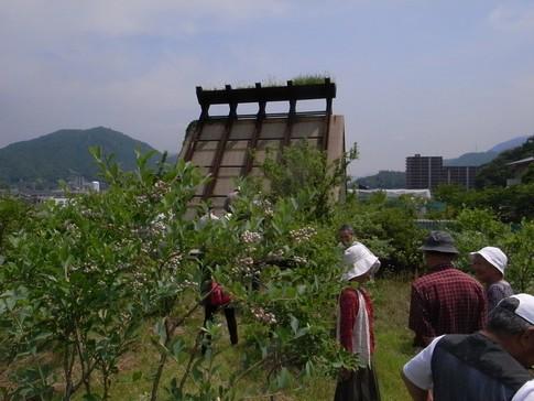 f:id:akinosato:20130614102824j:image