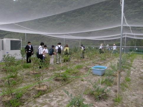 f:id:akinosato:20130628105348j:image