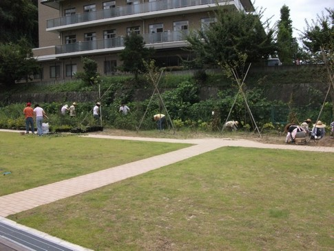 f:id:akinosato:20130907105943j:image