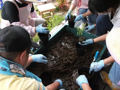 f:id:akinosato:20130907134806j:image