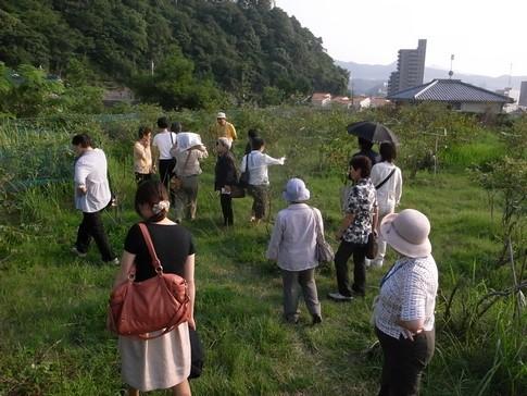 f:id:akinosato:20130912163111j:image