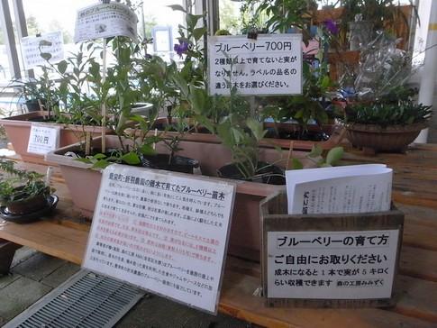 f:id:akinosato:20131008103631j:image