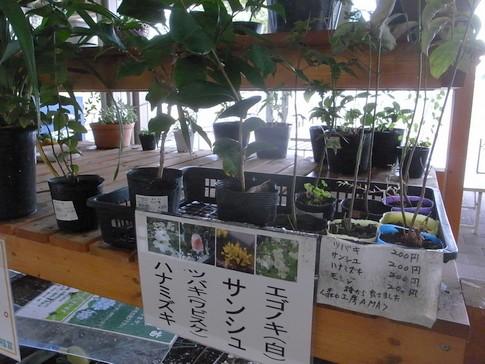 f:id:akinosato:20131008103659j:image