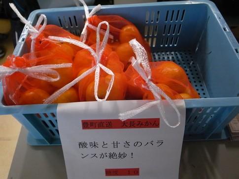 f:id:akinosato:20131114163337j:image
