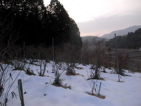 f:id:akinosato:20140225170524j:image