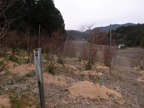 f:id:akinosato:20140304133827j:image