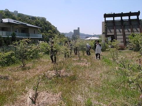 f:id:akinosato:20140423120456j:image