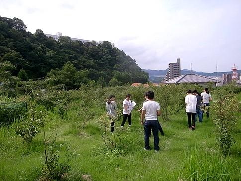 f:id:akinosato:20140902094720j:image