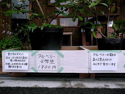 f:id:akinosato:20140904111950j:image