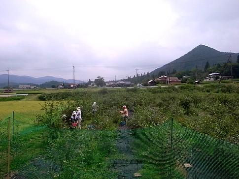 f:id:akinosato:20140906105223j:image