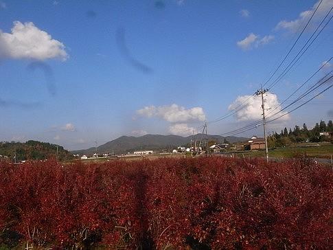f:id:akinosato:20141122152934j:image
