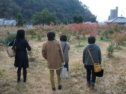 f:id:akinosato:20141209160530j:image